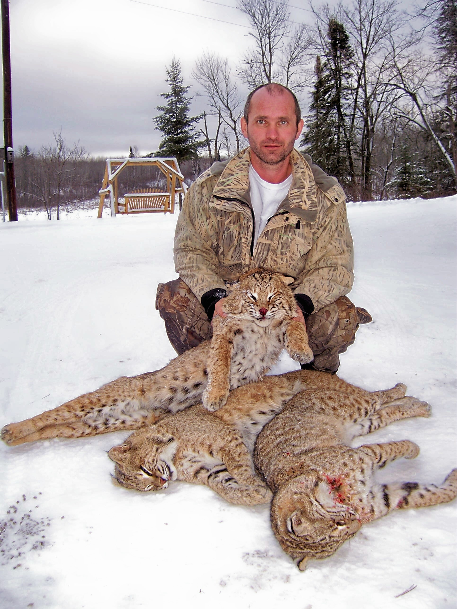 cat-hunting-2005-060